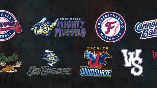 New PaddleHeads logo up for minor league baseball honor
