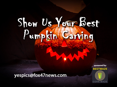 pumpkin carving promo box 480x360.png