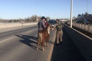 Jason and his sons Dusty and Kody were able to safety catch the pony