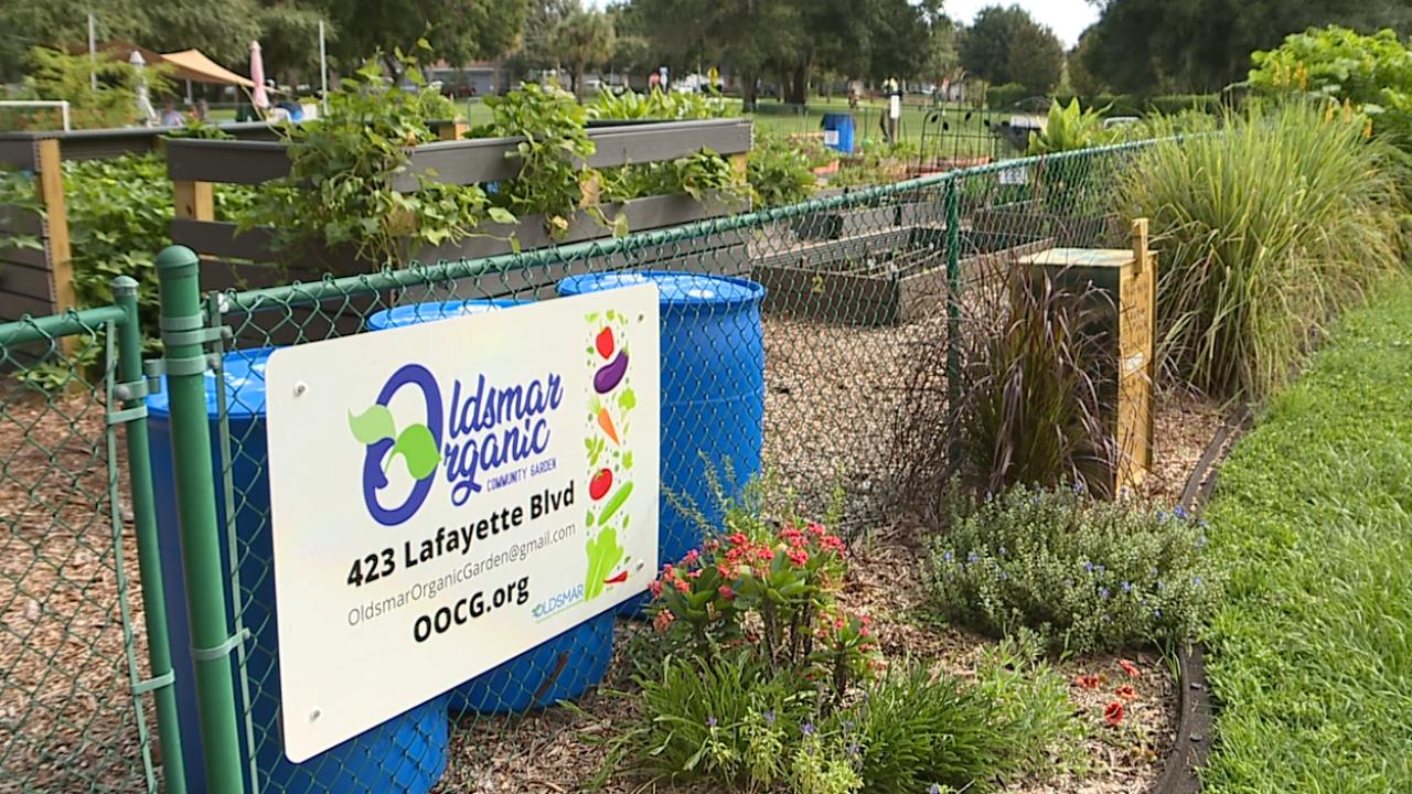 Oldsmar Community Garden