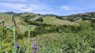 Hills of San Luis Obispo County
