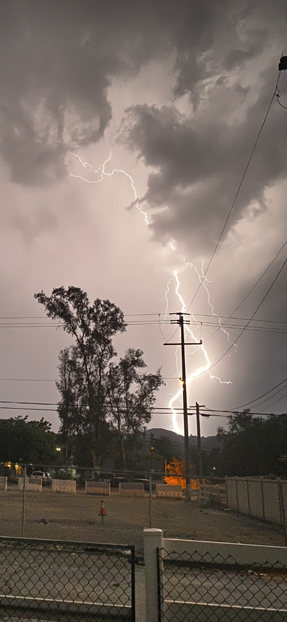 lightning pala.png