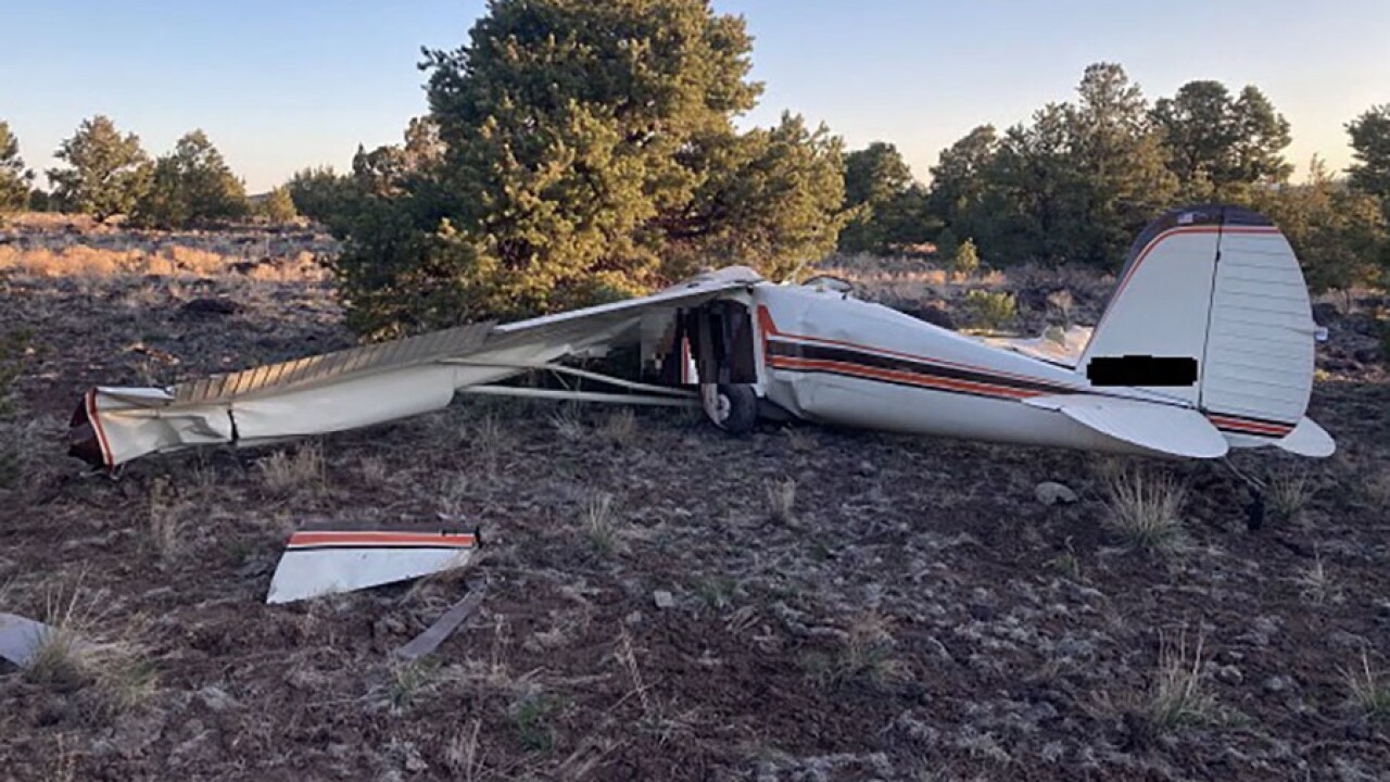 arizona_plane_crash_vista_victims.jpg