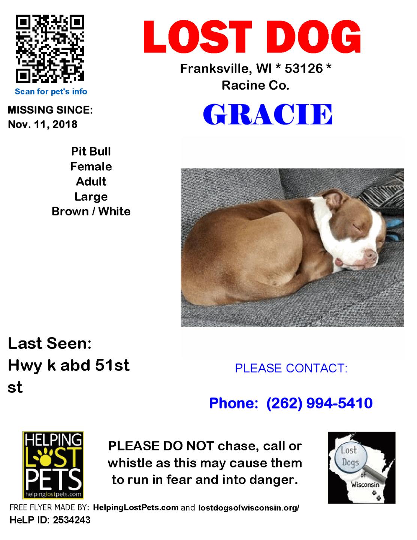 11118 Gracie Pit Adult.png
