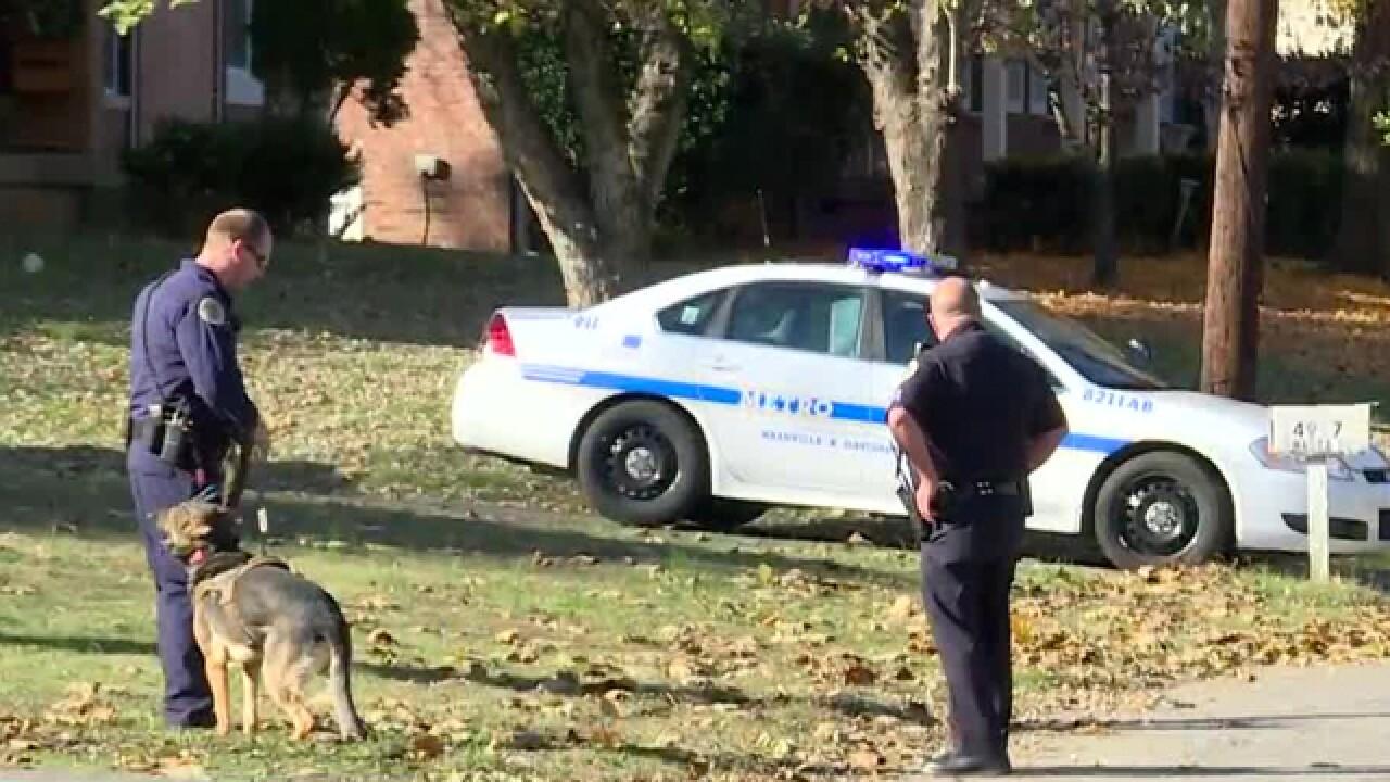 1 in custody, 1 sought in Nashville crime spree