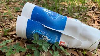 styrofoam-cups.png