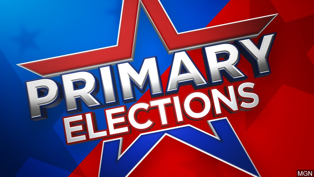 Primary Elections file image graphic