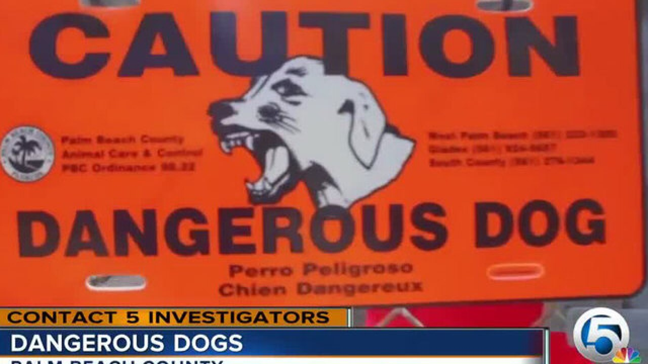 Contact 5 investigates 'dangerous dog' list, uncovers fatal dog attack in Palm Beach Co.