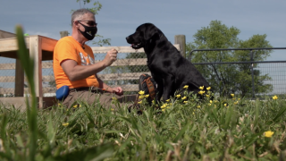At Warrior Canine Connection, veterans like retired U.S. Air Force Col. John Bryk help train dogs like Dole, who will eventually go on to be service dogs for other veterans.