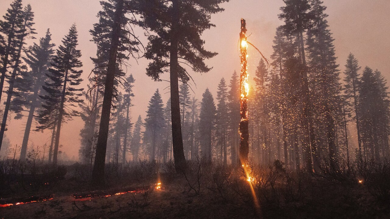 Resources stretched thin for firefighters battling historic wildfires