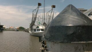 Shrimpers fear impacts of Morganza Spillway opening