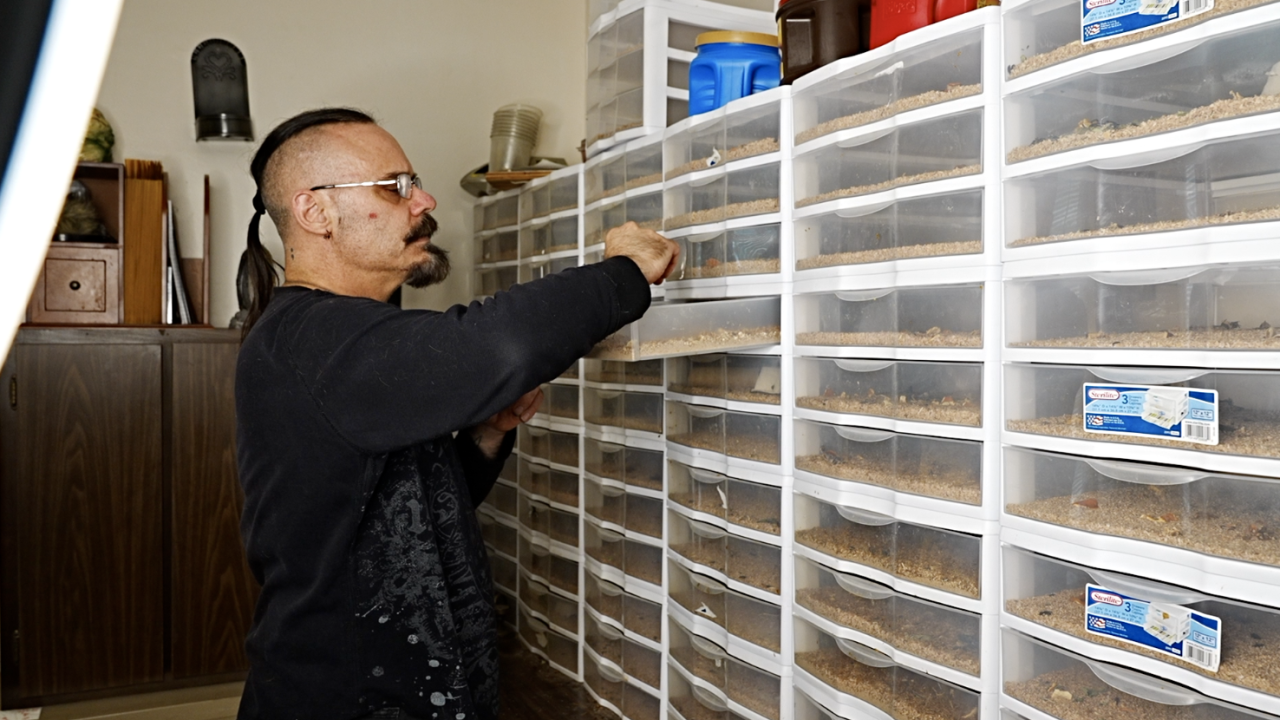 Eric Zay showing off his insect farm