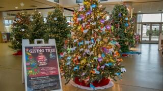 Giving Tree 11-2018-1740 E.jpg