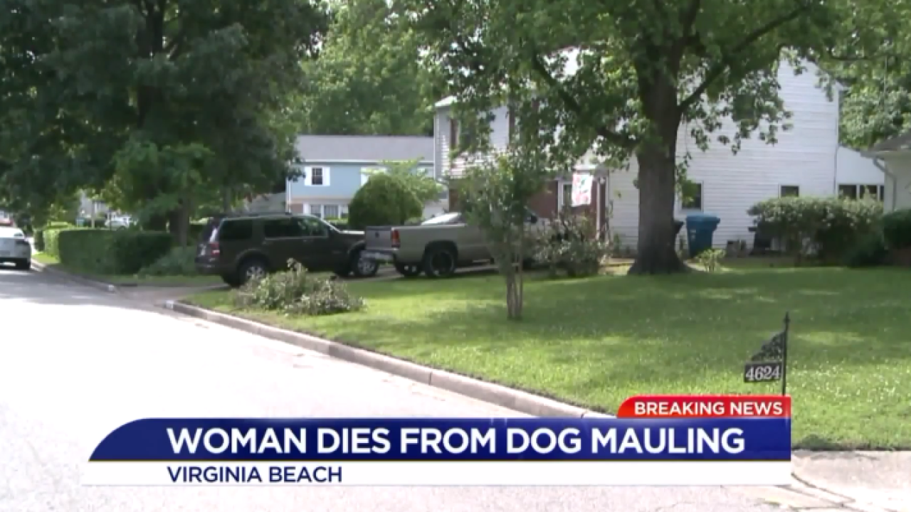 Woman in her 90s dies after being attacked by adopted pit bull in Virginia Beach
