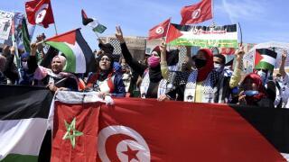 palestine protest_AP.jpeg