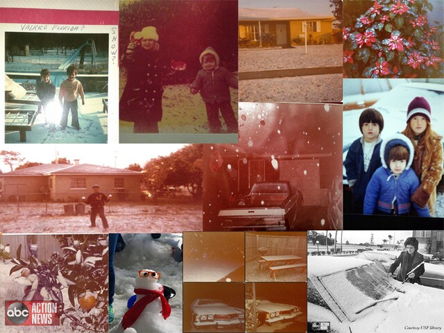 SNOW DAY | Pictures from the day it snowed in Tampa 41 years ago