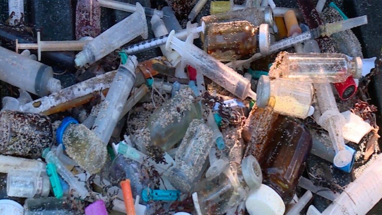 wptv-beach-needles-waste-.jpg