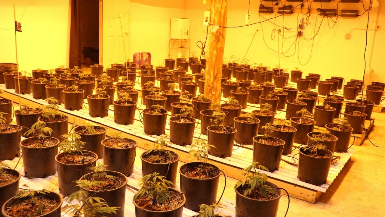 Colorado authorities arrest 3 people in marijuana bust spanning 3 counties