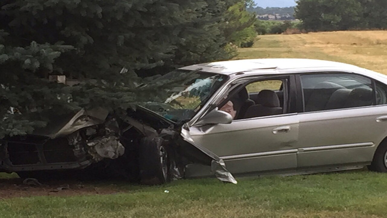 Mother, four children hurt after crash into tree