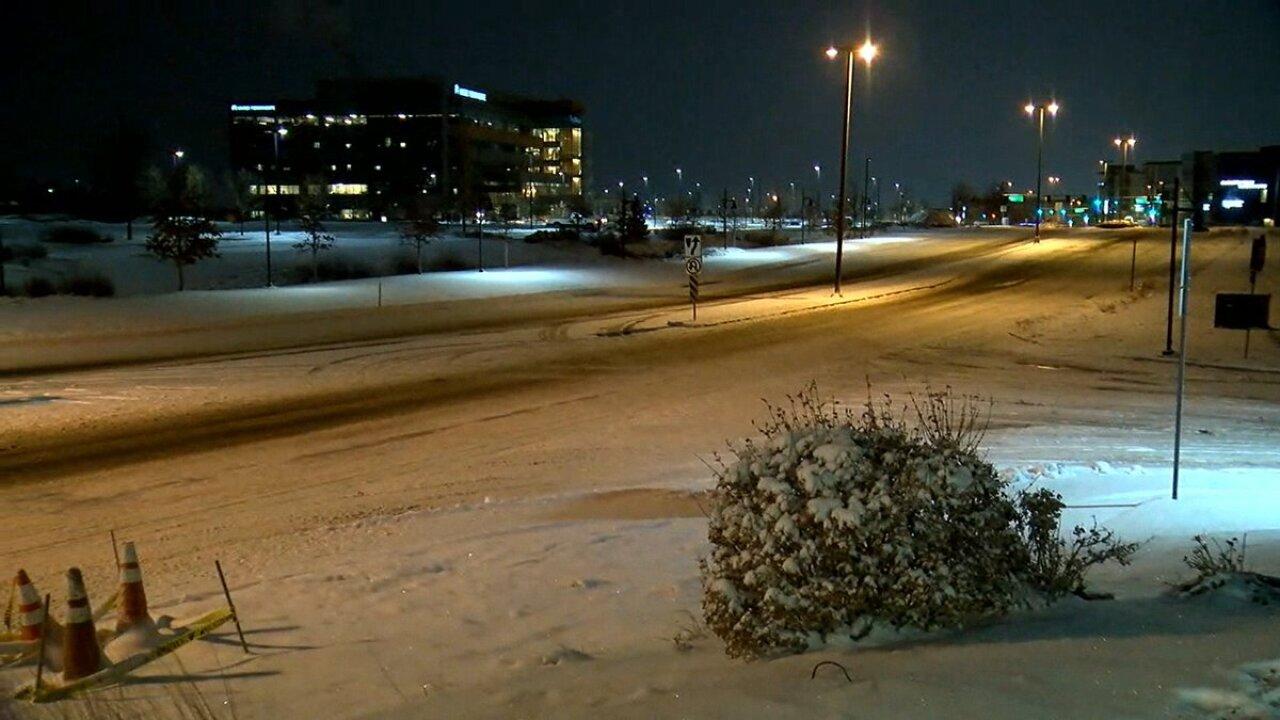 snow-feb4-morning.jpeg