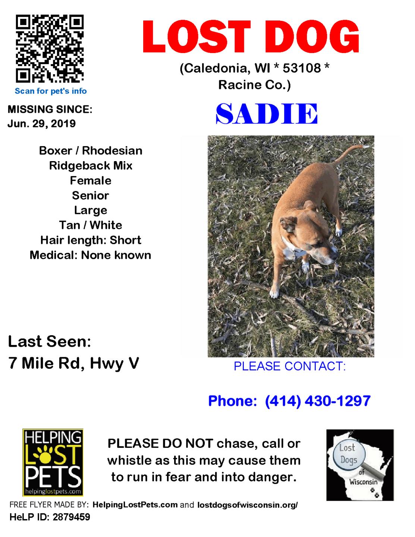 0629 Sadie Boxer Rhodesian Senior.png