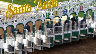 Santa Anita Park To Remain Open After 3 More Horses Die