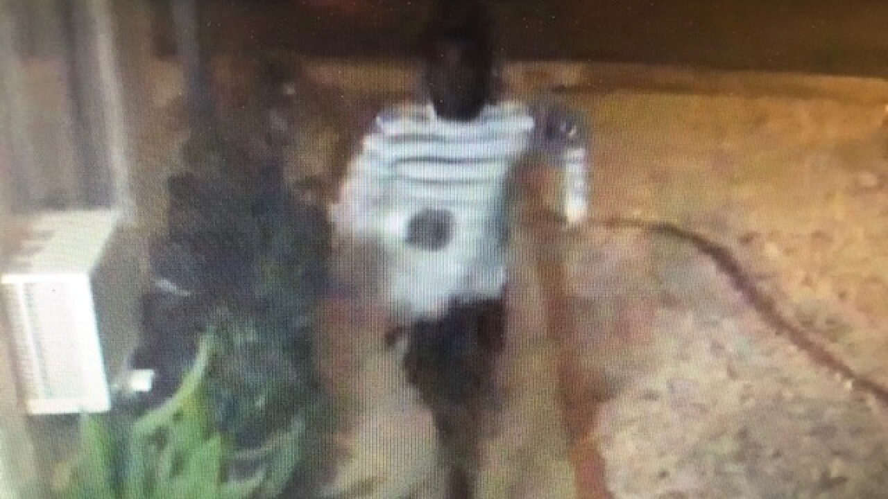 Las Vegas police searching for suspect after home surveillance video captures beating, apparent kidnap