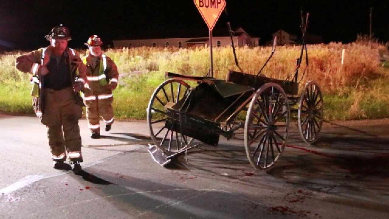 7 injured after car crashes into Amish buggy