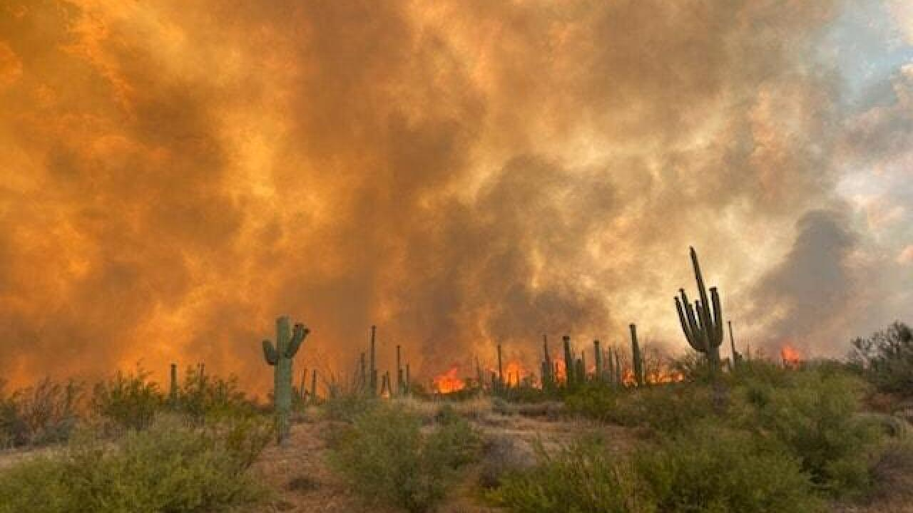 Thousands forced to evacuate as Arizona wildfire continues to spread