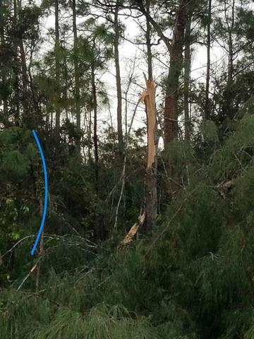 PHOTOS: Strong storms batter Palm Beach County
