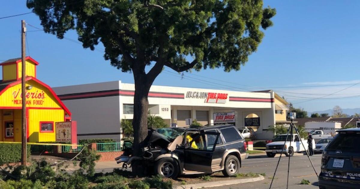 Driver killed in El Cajon after slamming into tree