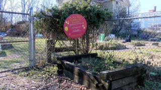 Walnut Hills Community Garden
