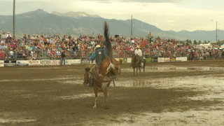 Ennis Rodeo: Highlights & Results