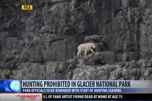 Hunting is prohibited in Glacier National Park