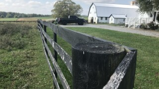 Police seek gunman who shot & killed horses in Monkton
