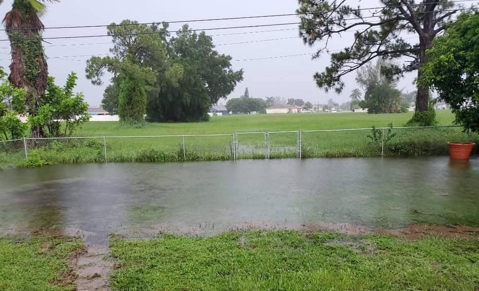 Flooding in neigh..jfif