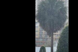 VIDEO: Snow flurries in Palm Beach County, Treasure Coast?