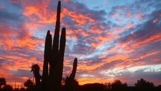 Gorgeous Arizona sunrise on Monday morning