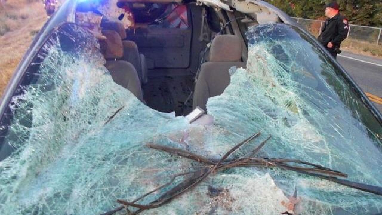 Horse vs. Car in Twin Falls County