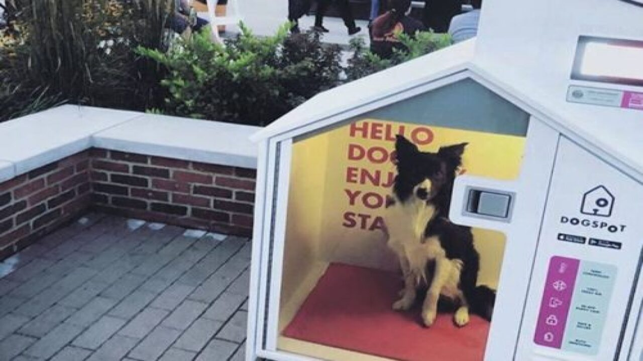These Temperature-controlled Dog Houses Are A Genius Solution For People Running Errands With Their Dogs
