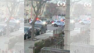 Man arrested ridgewood.jpg