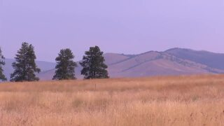NW MT Drought Conditions