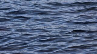 water_MylsTvud.jpg