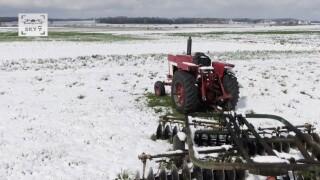 snow farm spring