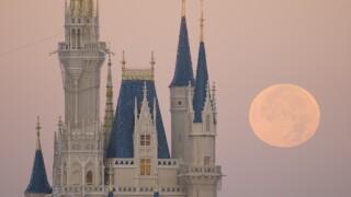 Full Moon Over Disney World