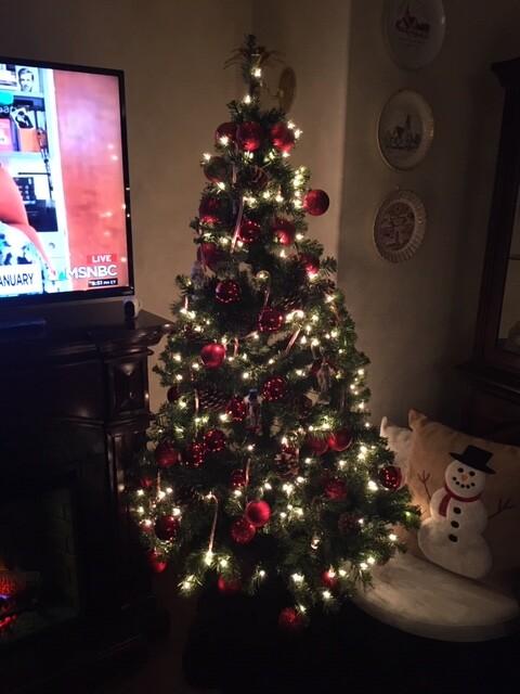 Kathy Holstein Let it Glow -- Christmas.JPG