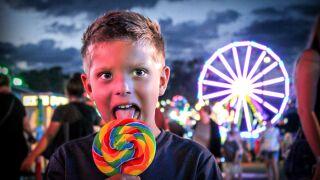 Ingham County Fair