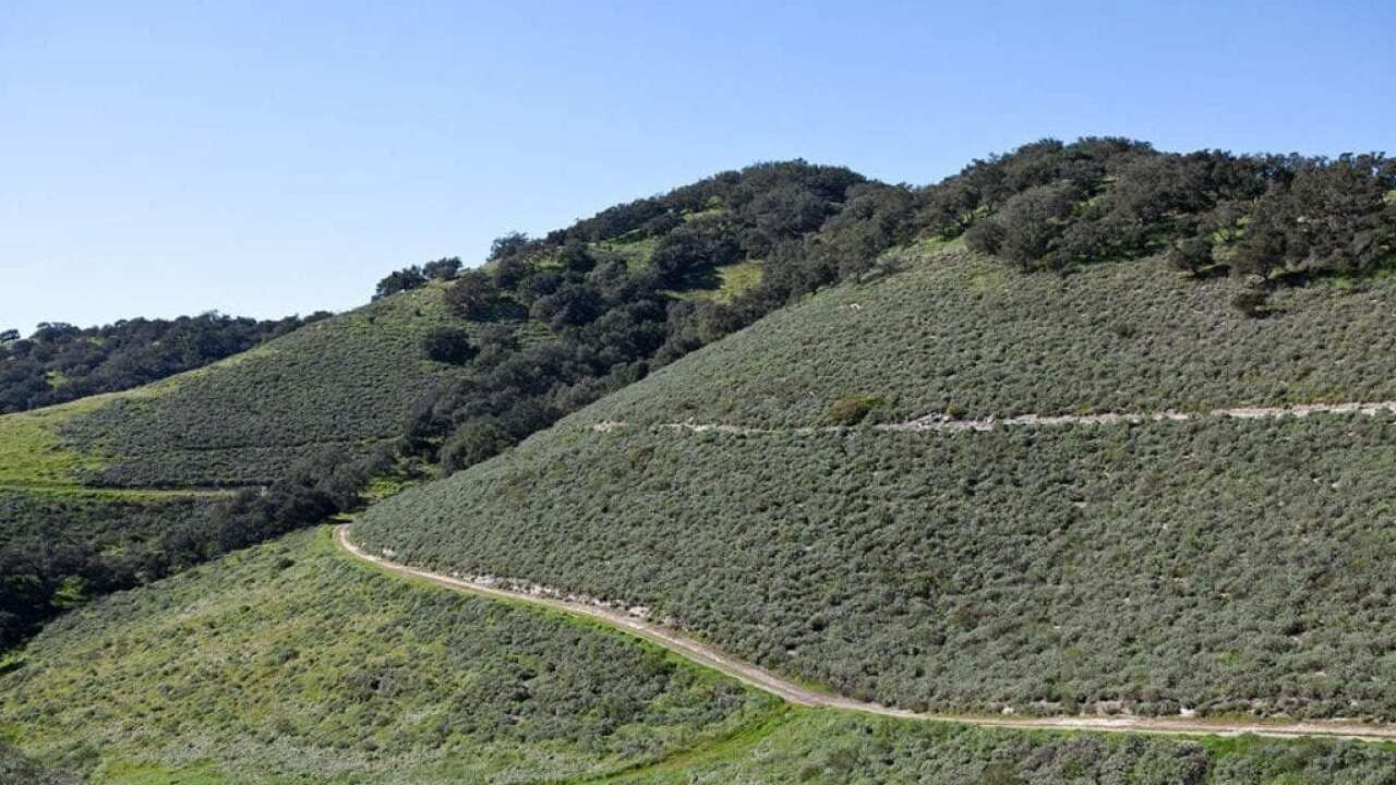 Land Conservancy breaks ground on Pismo Preserve roadway improvements