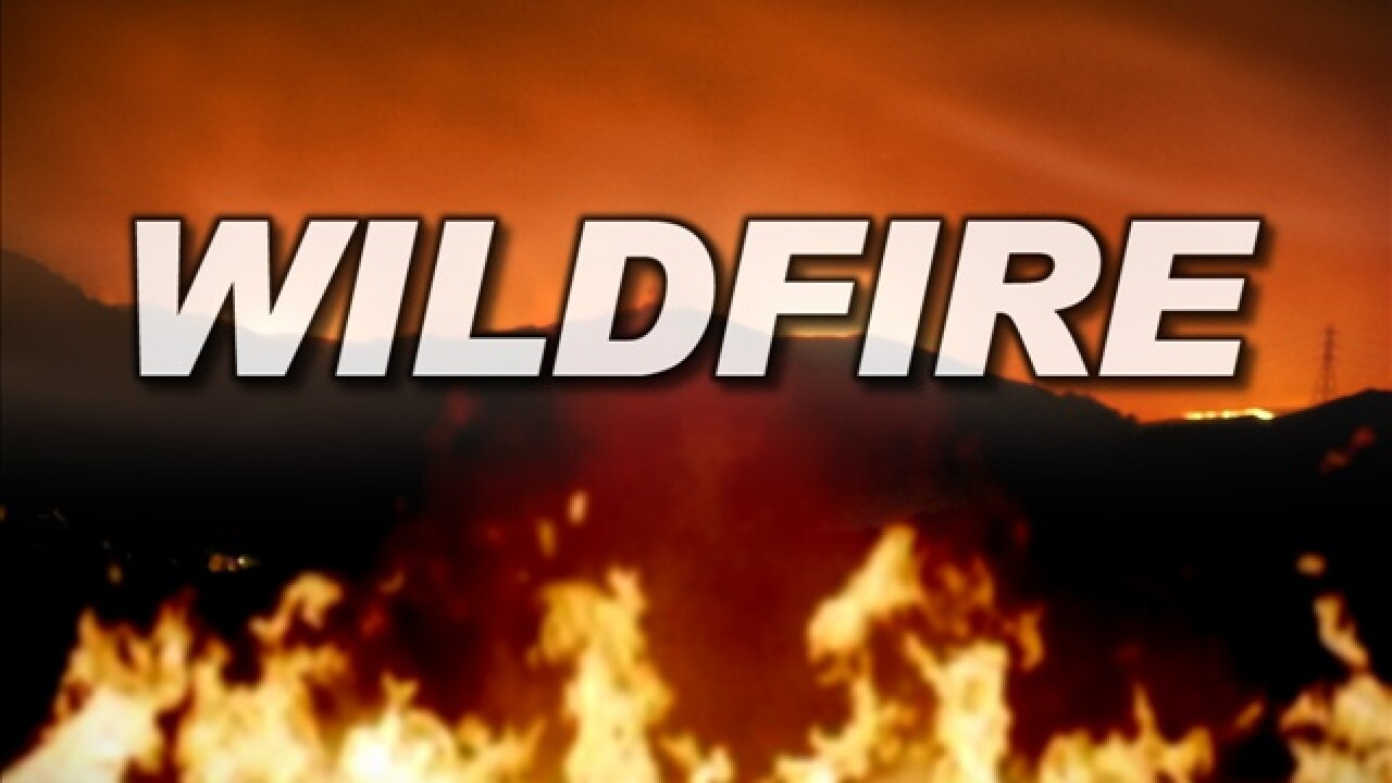 Wildfire marks beginning of Memorial Day weekend in Tooele County