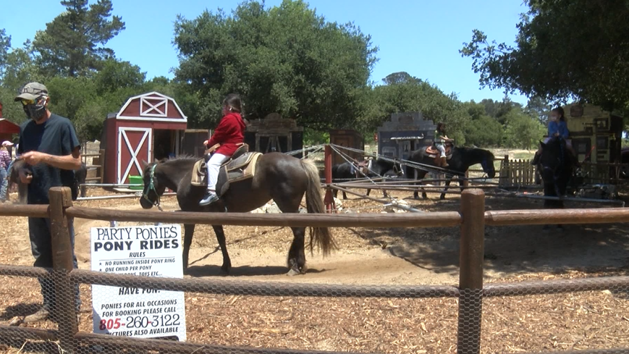 PONY RIDES.PNG